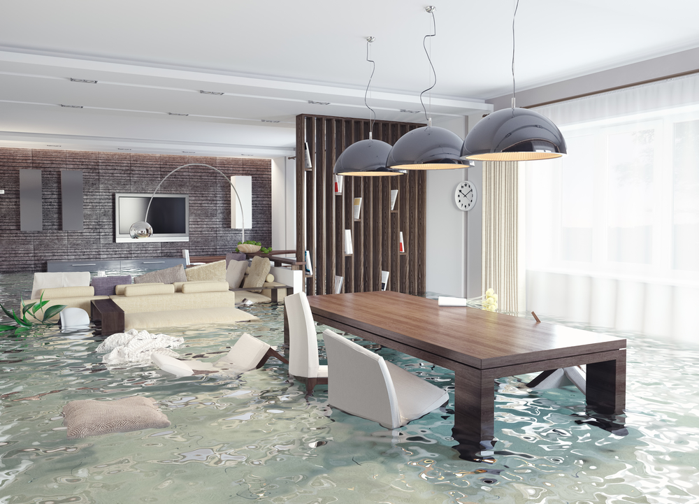 what do i do when i need flood damage restoration in palm beach